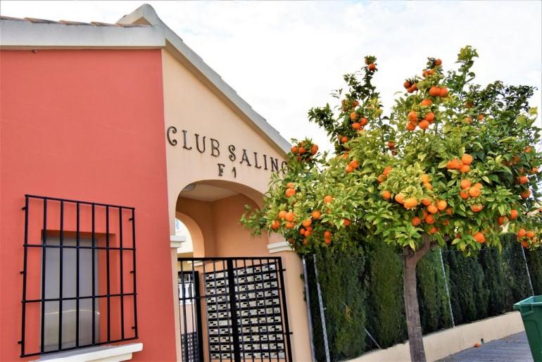 Club Salino 15